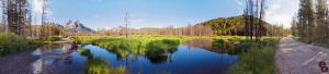 McGowen Meadow