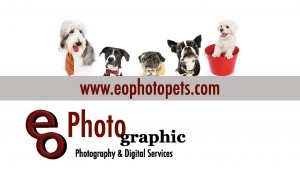PETS Business Card BACK
