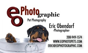 PETS Business Card Front